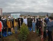 21 Mart'ta Yanan Ormanlar Küllerinden Doğuyor…